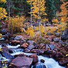 Healing Rivers Of Fall by John  De Bord Photography