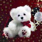 Snowdrop the Teddy Bear ! by Morag Bates