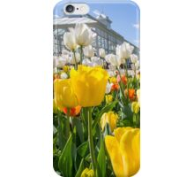 Spring Colours iPhone Case/Skin