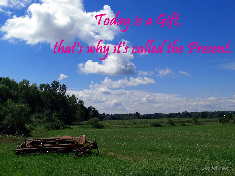 Today is a Gift by BobJohnson