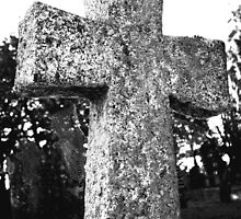 Cobwebs On The Cross by Dave Godden