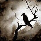 Crow by Debbie  Adams