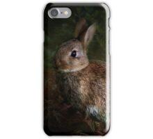 Rabbit iPhone Case iPhone Case/Skin