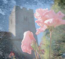 Death In The Graveyard by Dave Godden
