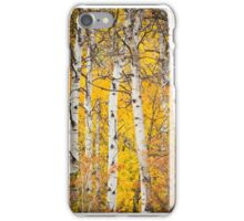 Fall Colors in Aspen Trees iPhone Case/Skin