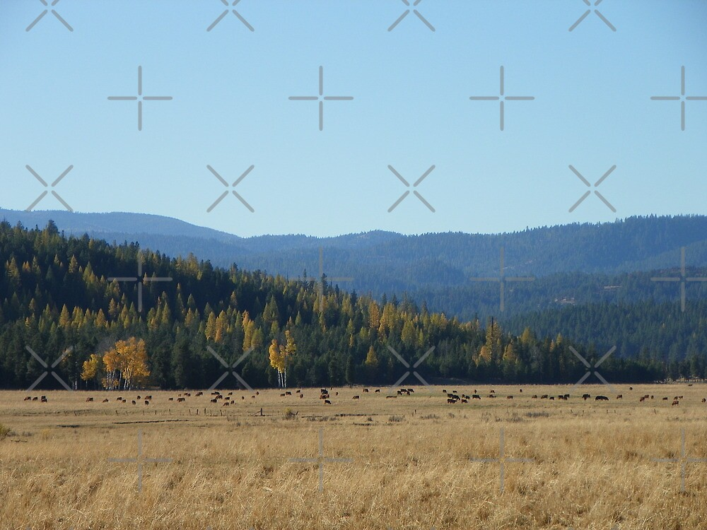 Whitney in Autumn by Betty  Town Duncan
