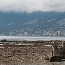 Stanley Park Vancouver by creativegenious
