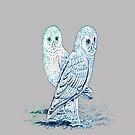 Color Owls by SeanFitz