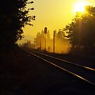 Railroad & dust by Rasevic