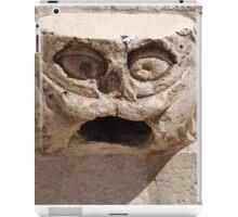 Gargoyle Head. iPad Case/Skin