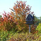 The urban birdhouse by NewfieKeith