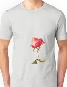 Sweetness and Innocence T-Shirt