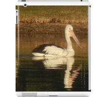 Pelican Reflected iPad Case/Skin
