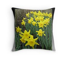 Easter Daffodils - Greeting Card Throw Pillow