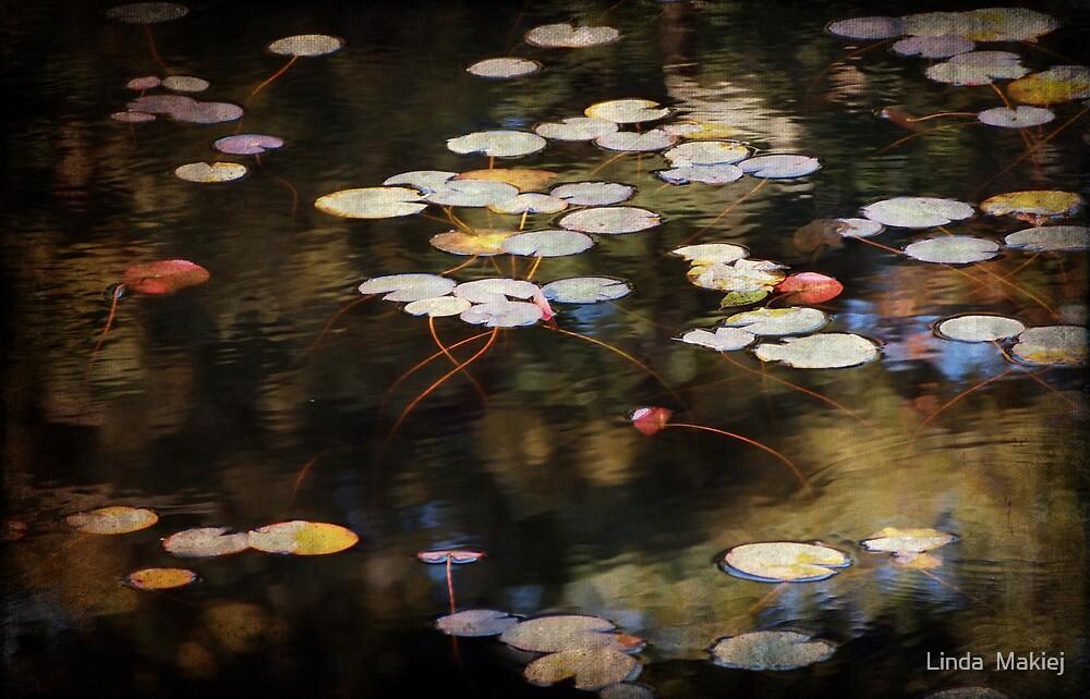 Autumn Pond by Linda  Makiej
