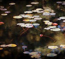 Autumn Pond by Linda  Makiej Photography