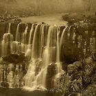 Vintage Falls at Ebor by Clare Colins