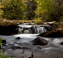 Abrams Creek, Tennessee by Sam Warner