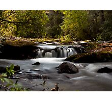 Abrams Creek, Tennessee Photographic Print