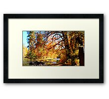 Fall 1 -  Framed Print