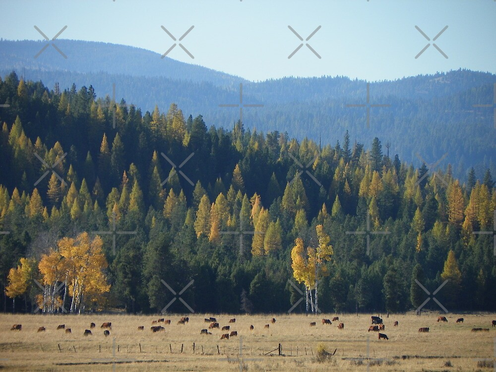 The Golden Blues of Autumn by BettyEDuncan
