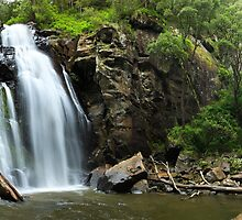 Stevenson's Falls, Otways National Park, Australia by Michael Boniwell