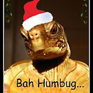 Bah Humbug by Angie O'Connor