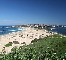 Newcastle Beach, New South Wales, Australia by Jane McDougall