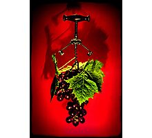 Grape vine Photographic Print
