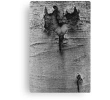 wooden heart Canvas Print