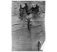 wooden heart Poster