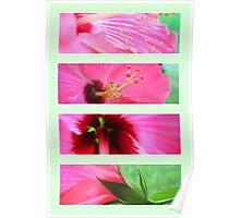 Florals (Original) Poster