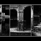 Roman Baths Triptych [black] by Damienne Bingham