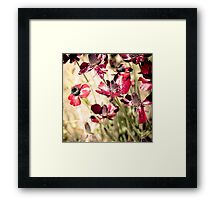 With love from a dear ones garden Framed Print