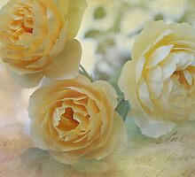 Heirloom Yellow Roses II by Lynn Starner