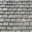 Roof of Cornish slate for iPhone by Philip Mitchell