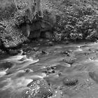 river leven(riverside park) by ninjabob
