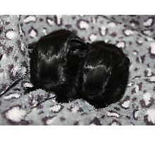 Two Little Girls Born Today Photographic Print