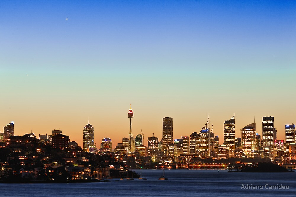 Sydney city sky line  by Adriano Carrideo