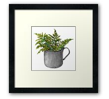 Mug with fern leaves Framed Print