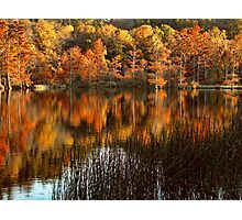 Another Beavers Bend Autumn Photographic Print
