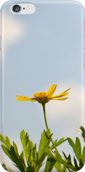 Spring - Yellow Flower iPhone Case by Denis Marsili - DDTK