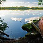 Kaukajärvi by Niko Mönkkönen