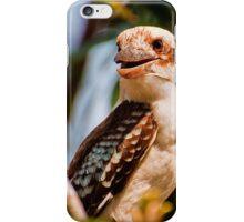 Laughing Kookaburra iPhone case iPhone Case/Skin