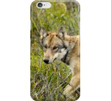 i On The Move  iPhone Case/Skin