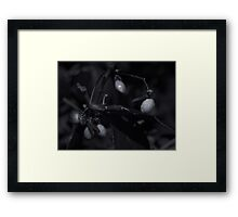 small world 2 Framed Print