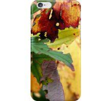 Autumn puzzle iPhone Case/Skin