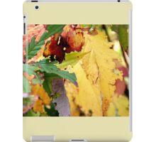 Autumn puzzle iPad Case/Skin