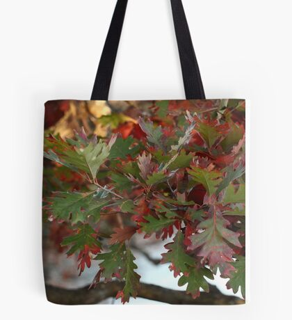 Red and Green Leaves over the Oconomowoc River Tote Bag