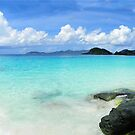 Trunk Bay Pano by Marylee Pope